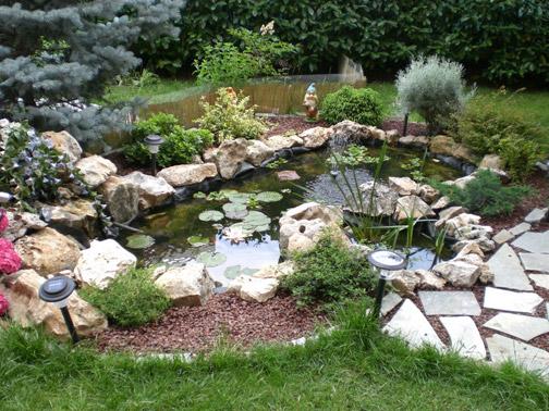 Come abbellire un giardino come ristrutturare la casa for Sassi per tartarughe