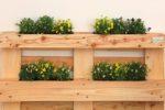 La fioriera in pallet viene completata con alcuni ripiani che gli consentono di diventare una parete attrezzata per il verde. Dimensione: 120x80cm