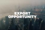Capire i mercati per cogliere l'exportunity