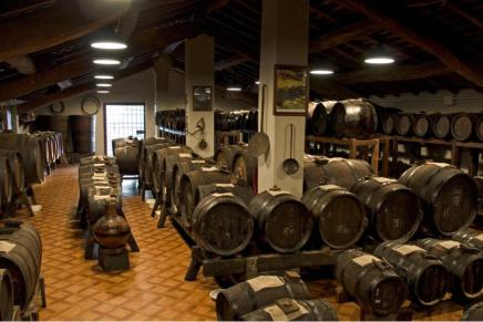 One Consortium for the IGP Balsamic Vinegar of Modena