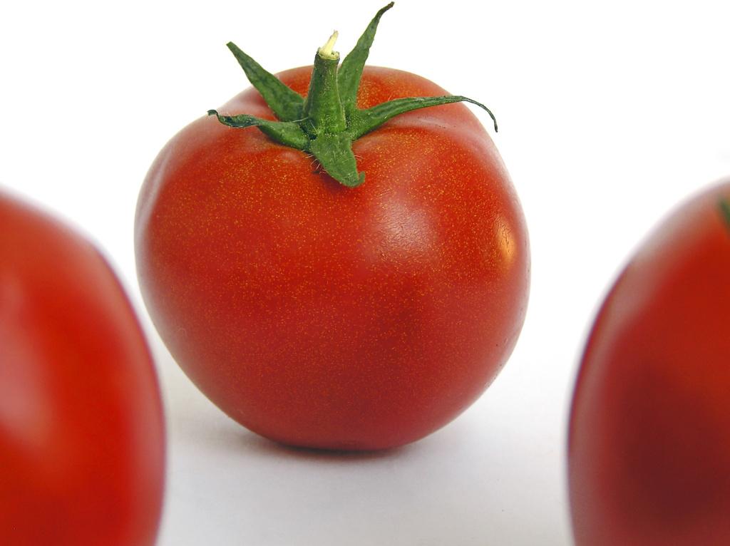 distant  tomato