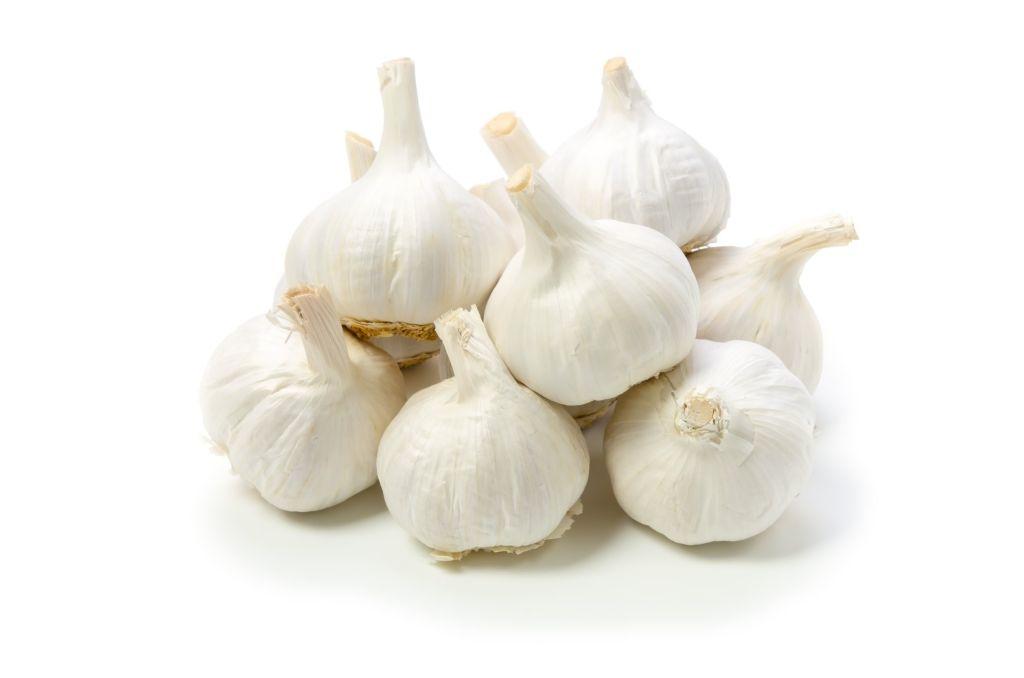Voghiera Garlic
