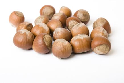 Hazelnut from Piedmont