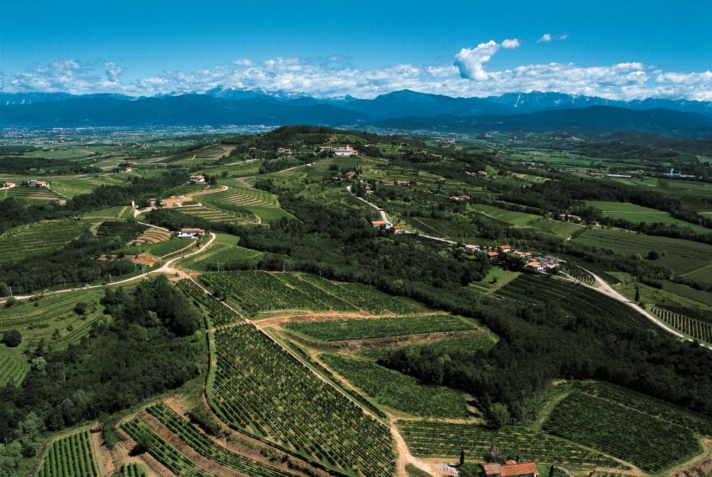 vista aerea dei Colli Orientali del Friuli con i vigneti Specogna