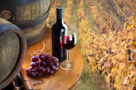 Italian wine: export increased in the first months of 2015
