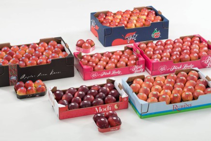 Participation of Vog in Asia Fruit Logistica