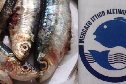 Fish market in Milan: new quality brand