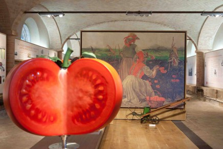Food is culture: museums in Parma are main characters