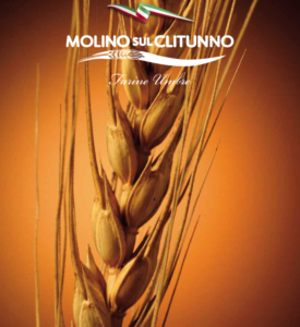 Molino01
