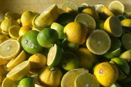 Heading towards superfoods, bergamot, too, becomes a candidate