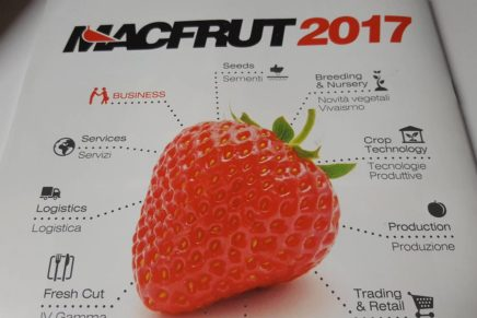 Macfrut: all the news about the 2017 edition
