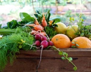 fruttaweb-frutta-settimanale