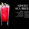 bg_banco_di_prova1 cocktail1.jpg