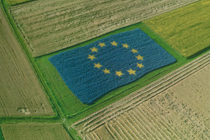 Emissioni, rinnovabili e borse in plastica: l'ambiente nella legge europea 2015