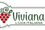 Viviana, progetto di rilancio dell'uva da tavola italiana