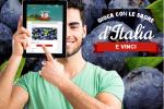 Crai lancia il concorso online Gioca con le sagre d'Italia