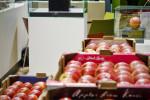 Vog a Fruitlogistica con un focus su Envy