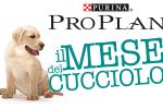 """Purina: al via la quinta edizione del """"Il mese del cucciolo"""""""