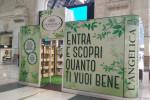 L'Angelica apre un temporary store in Stazione Centrale  a Milano