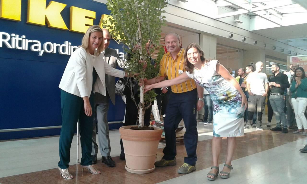 Auchan Collatina Nuovo Servizio Di Ikea Ordina E Ritira Gdoweek