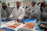 Irlanda del Nord, proposte food in private label
